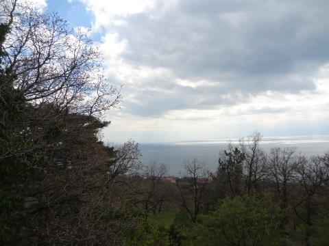 Купить земельный участок в Крыму ЮБК Ялта Кореиз